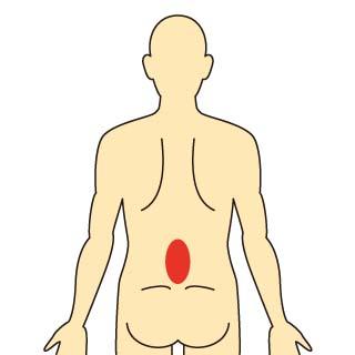 腰椎椎間関節症