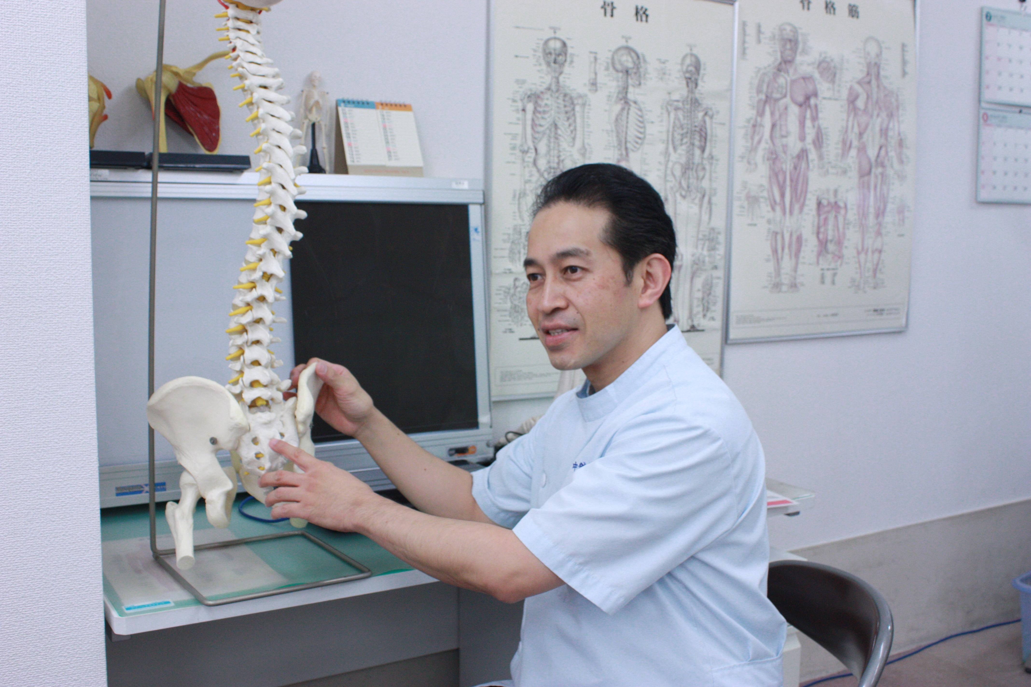 中新整骨院、模型を使って説明